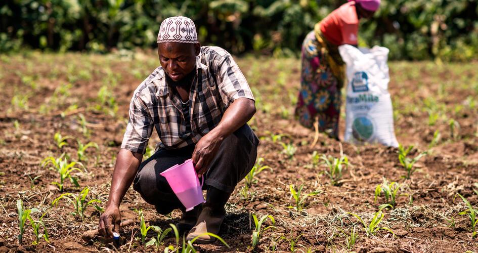 Elibariki Kimaro applying fertilizer in soil