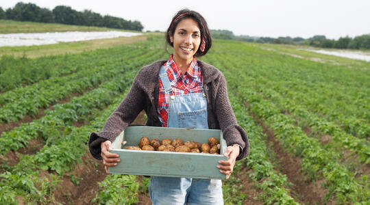 Woman holding basket of potatoes in field