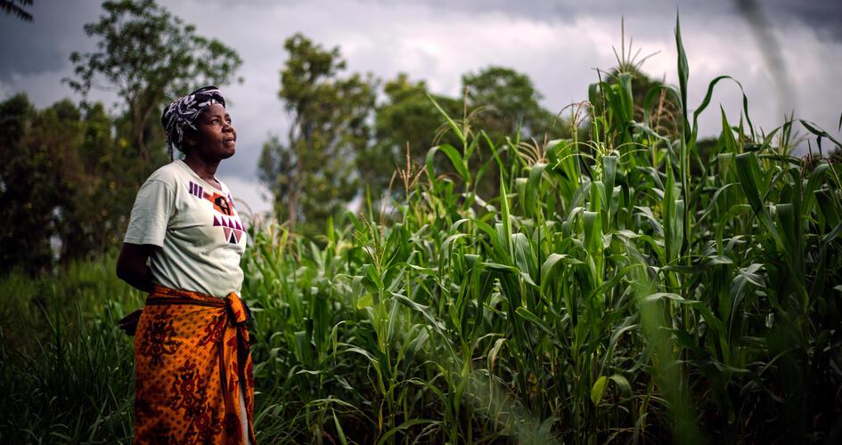 Anastancia Kulundu looking up from a maize farm