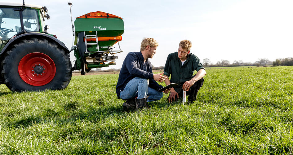 Four steps to successful reseeding