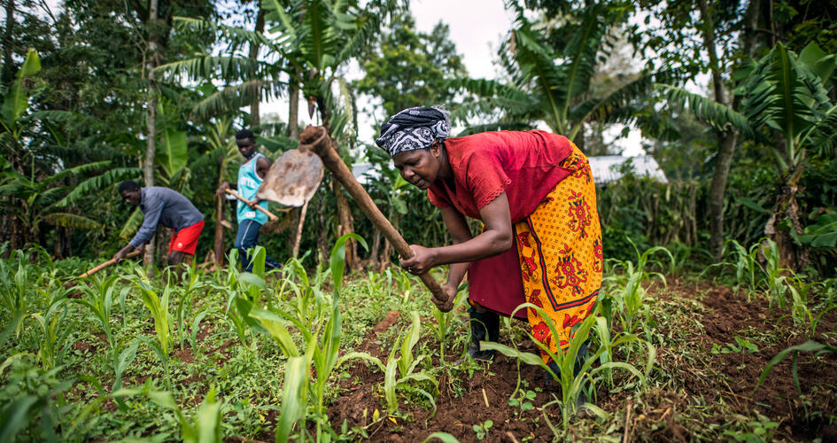 Anastancia Kulundu working in her farm with two men in the background